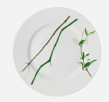 Raynaud Limoges Verdures Dessert Plate, MPN: 0596-17-101022, EAN: 3660006562437, UPC: