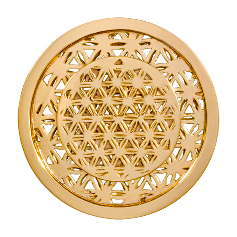 Nikki Lissoni Denim Dreams Golden Capture Medium Gold Plated Coin C1533GM