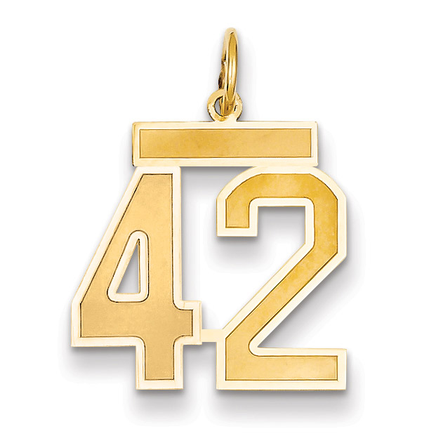 14K Yellow Gold Medium Satin Number 42 Charm