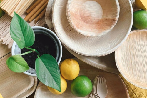 FOOGO green sample pack palm leaf plates bowls wooden cutlery