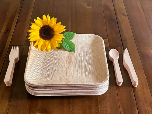 FOOGO Green combo 25 square party pack plates and cutlery