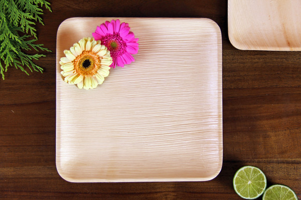Large 10 inch 24cm square Areca leaf plate disposable eco friendly biodegradable compostable wedding party function plate premium quality sturdy use and throw woody bamboo main course bio food display