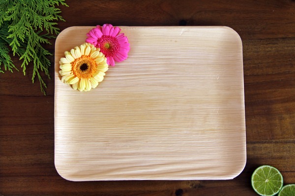 12x10 inch rectangle trays large