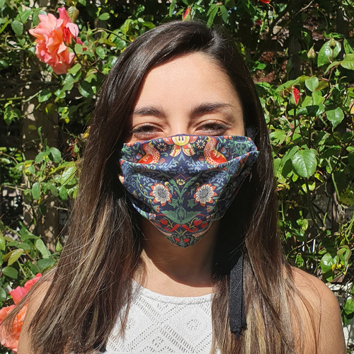 Strawberry Thief Face Mask