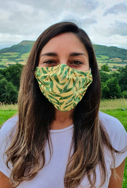 Willow Bough face mask with elastic