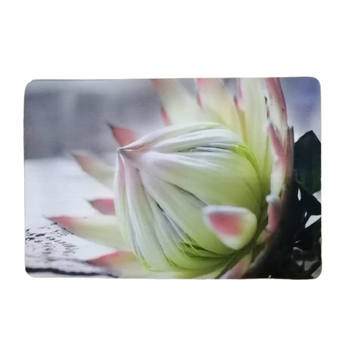 PVC/ Felt Placemat - Set of 6 - White King Protea