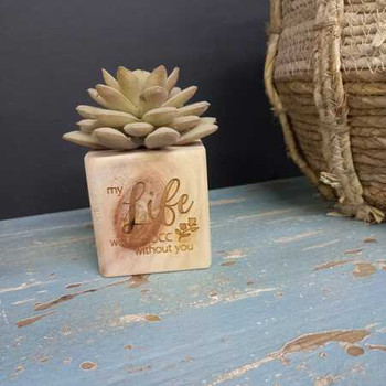 Natural Wood Plant Holder - Life Would Succ