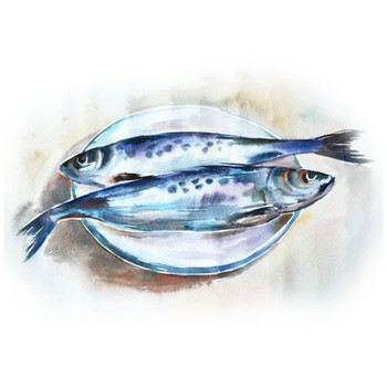 Disposable Placemat - Pack of 24 - Water Colour Fish