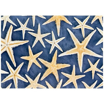 Disposable Placemat - Pack of 24 - Starfish