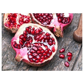Disposable Placemat - Pack of 24 - Cut Pomegranates