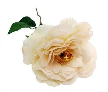 Nancy Gardiner Off-White Rose (42cm)