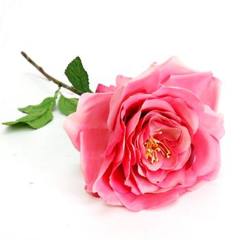 Rosa Rosina in Dusky Pink (57cm)
