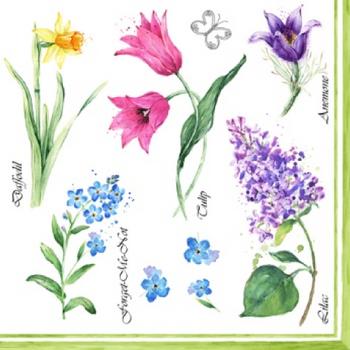 Serviette - Floreale Primavera (33x33cm)