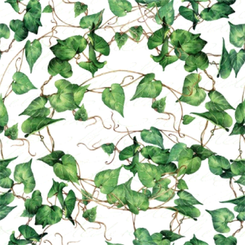 Serviette - Green Ivy Branches (33x33cm)