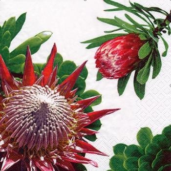 Serviette - Protea White (33x33cm)