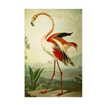 Chenille Rectangular Rug - Shaw Flamingo (155x230cm)