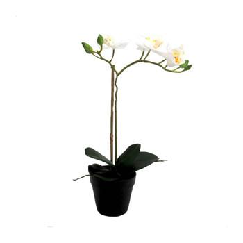 White Joy Artificial Orchid - 51.5cm