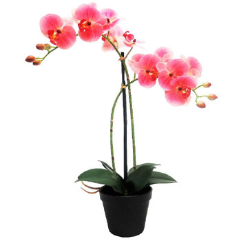 Perfection in Pink  Artificial Orchid - 55cm