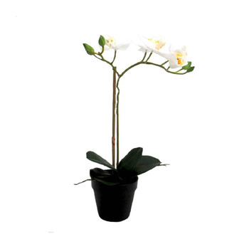 Simple Perfection Artificial Orchid - 39cm