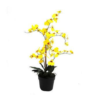 Yellow Dancer Artificial Orchid - 66cm
