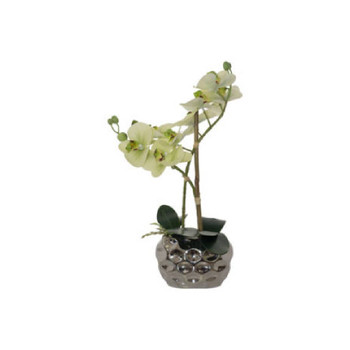 Artificial Green Orchid in Silver Pot (33cm)