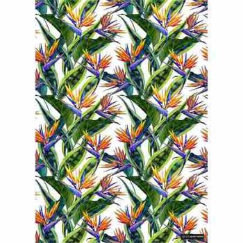 Gift Wrap Paper - Strelitzia & Snake Plant