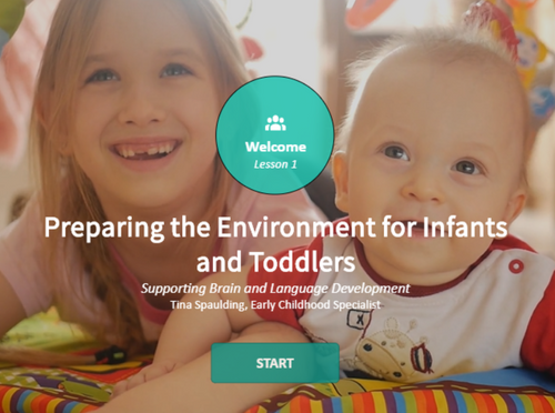 Preparing the Environment to Support Brain and Language Development