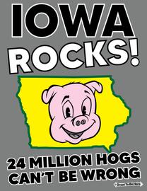 The Iowa Rocks! Men's/Unisex Fashion T-Shirt