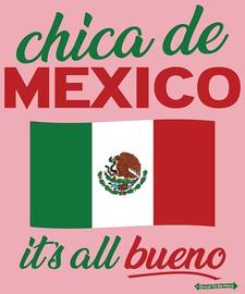 The Chica de Mexico / Mexican Girl Women's Fashion T-Shirt