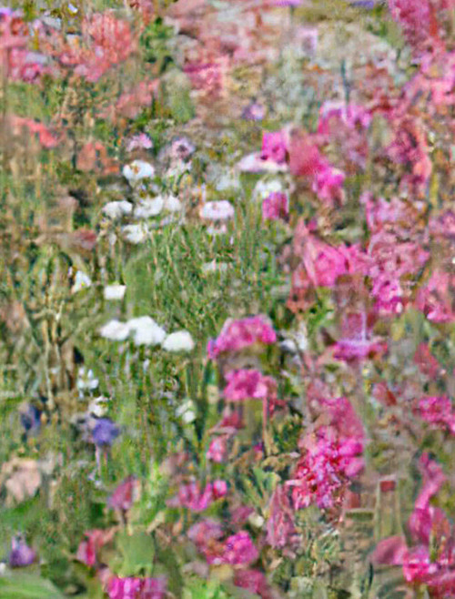 ;Flower Seeds/Wildflower Mixtures