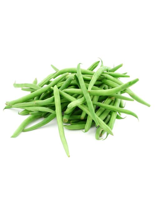 Bush Bean - Slenderette Bean Seed