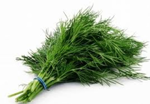 Dill Bouquet Herb Seed