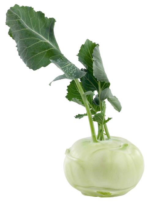 White Vienna Kohlrabi Seed