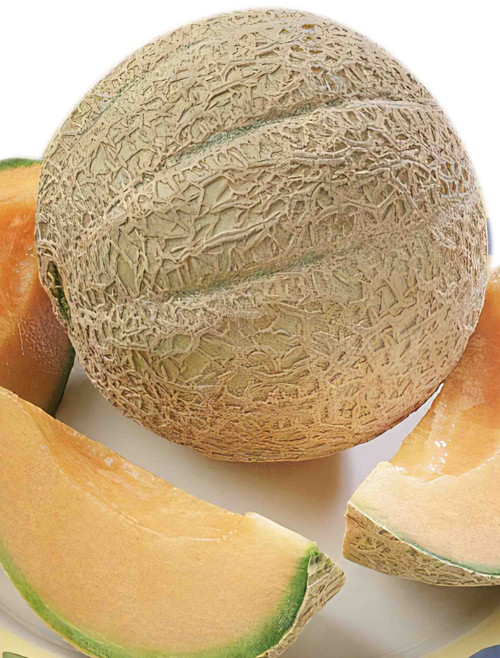 Hearts of Gold Melon Heirloom Seed