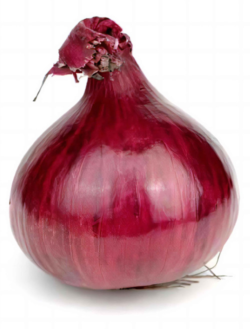 Vegetable Seeds/Onion/Onion - Short Day