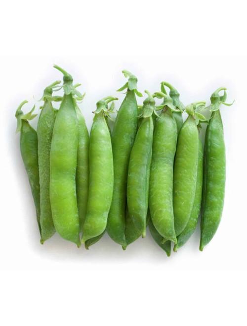 Vegetable Seeds/Peas