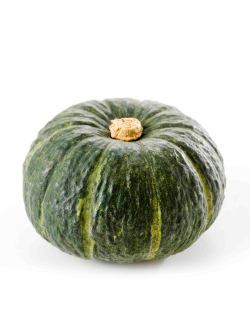 Burgess Buttercup Winter Squash Heirloom Seed