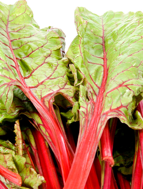 Ruby Red Swiss Chard Heirloom Seed