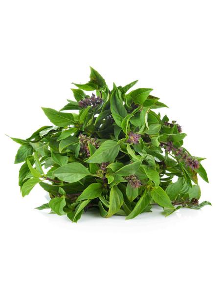 Basil, Cinnamon Herb Seed