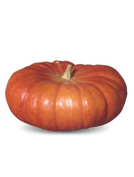 Vegetable Seeds/Pumpkin