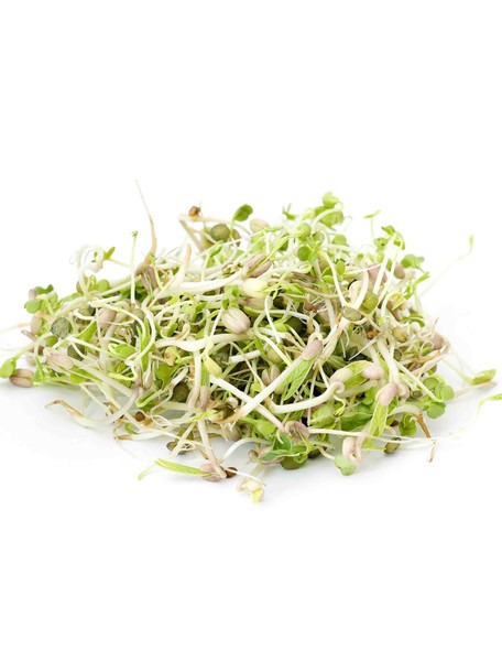 Countryside Delight Sprouting Seed Mix - 1 Pound