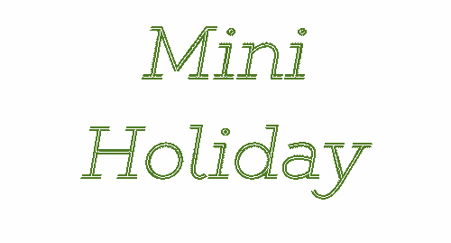 Mini Holiday Package