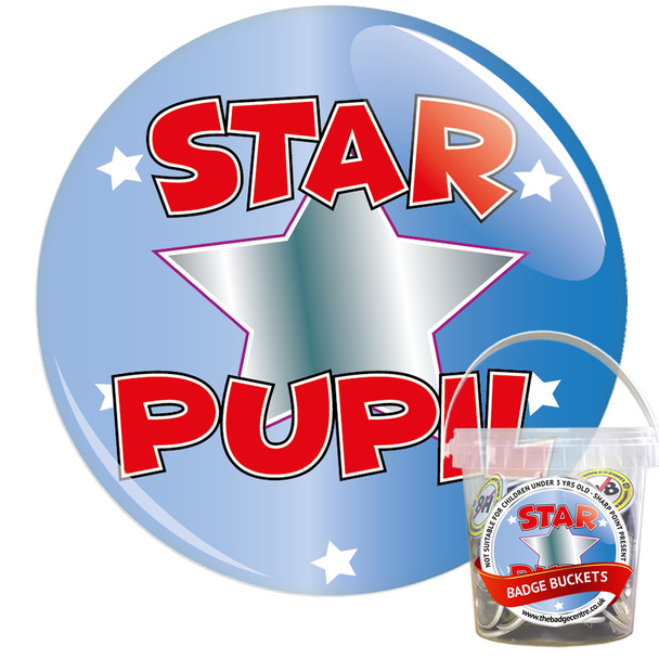 Pack of School Star Pupil Badges - Badge Bucket 1