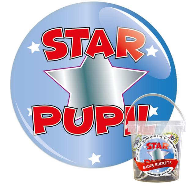 Pack of School Star Pupil Badges - Badge Bucket 1
