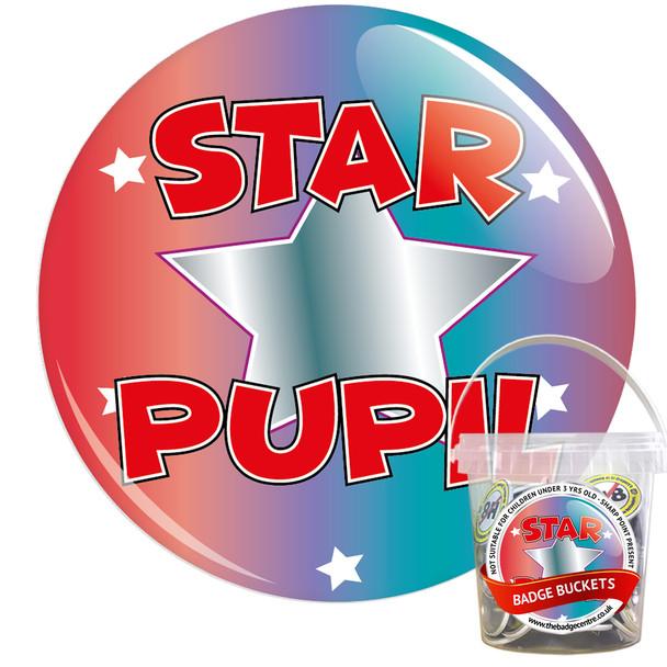Pack of School Star Pupil Badges - Badge Bucket 6