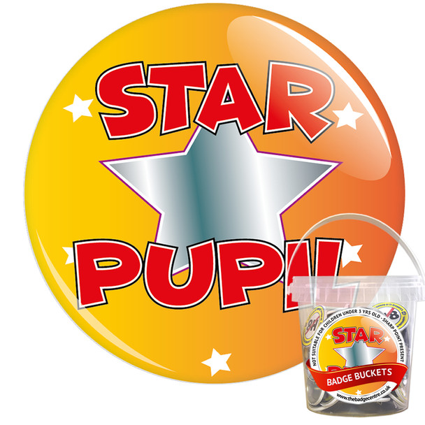 Pack of School Star Pupil Badges - Badge Bucket 7