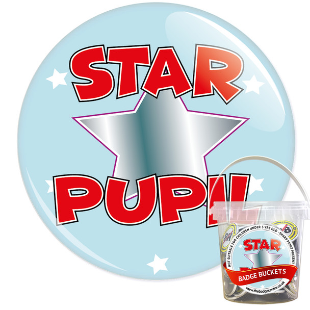 Pack of School Star Pupil Badges - Badge Bucket 9