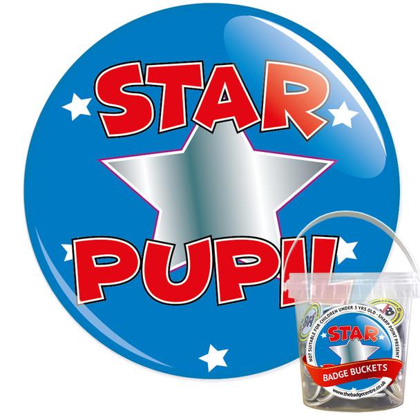 Pack of School Star Pupil Badges - Badge Bucket 11