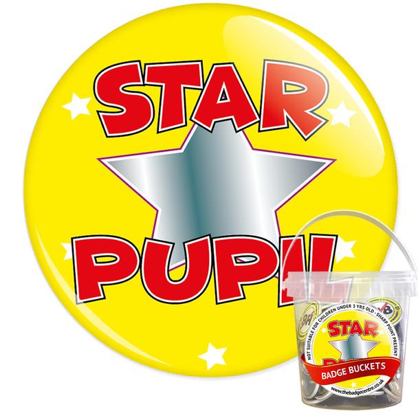 Pack of School Star Pupil Badges - Badge Bucket 12