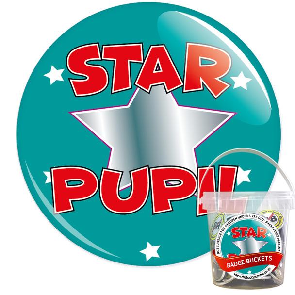 Pack of School Star Pupil Badges - Badge Bucket 13